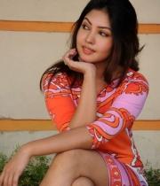 komal-jha-latest-hot-stills-photos-14