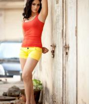 komal-sharma-hot-photoshoot-pics-13