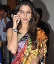 madhurima-saree-stills-at-tsr-film-awards-16