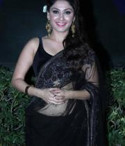 manjari-hot-stills-in-saree-5