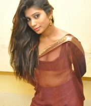 413_12_midhuna-waliya-hot-transparent-saree-photos-12