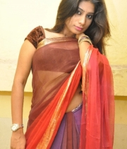 413_15_midhuna-waliya-hot-transparent-saree-photos-15