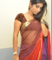 413_18_midhuna-waliya-hot-transparent-saree-photos-18