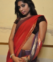 413_20_midhuna-waliya-hot-transparent-saree-photos-20
