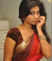 413_6_midhuna-waliya-hot-transparent-saree-photos-6