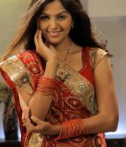 monal-gajjar-latest-saree-photos-10