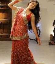 monal-gajjar-latest-saree-photos-16