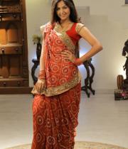 monal-gajjar-latest-saree-photos-17