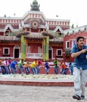nagarjuna-bhai-movie-songs31379250893
