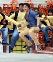 nagarjuna-bhai-movie-songs41379250893