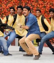nagarjuna-bhai-movie-stills101379250893