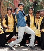 nagarjuna-bhai-movie-stills31379250893