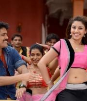 richa-gangopadhyay-hot-bhai-movie-stills1379250894