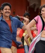 richa-gangopadhyay-hot-bhai-movie-stills21379250894