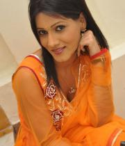 neetu-agarwal-hot-photos-06