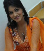 neetu-agarwal-hot-photos-18