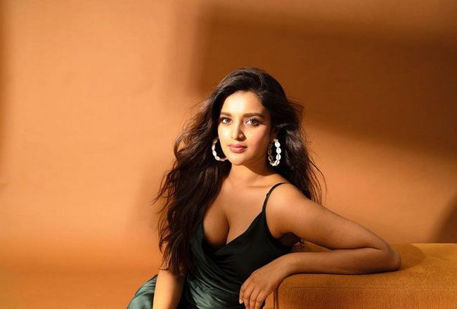 Nidhhi-Agerwal-Glam-Pictures_1