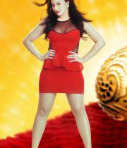 nikesha-patel-latest-hot-photo-shoot-stills-1