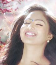 nikesha-patel-latest-hot-photo-shoot-stills-4