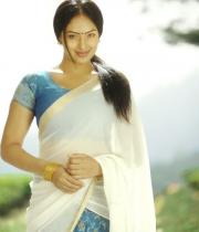 nikesha-patel-latest-hot-photo-shoot-stills-5