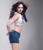 nikesha-patel-hot-photo-shoot-pictures-2