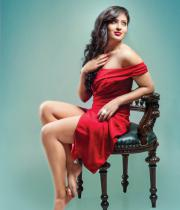 nikesha-patel-hot-photo-shoot-pictures-3