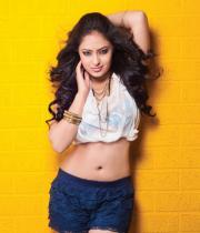 nikesha-patel-hot-photo-shoot-pictures-6