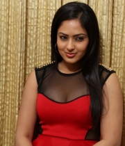 nikesha-patel-red-hot-photos-11