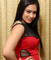 nikesha-patel-red-hot-photos-15