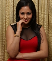 nikesha-patel-red-hot-photos-16