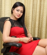 nikesha-patel-red-hot-photos-2