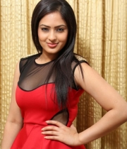 nikesha-patel-red-hot-photos-21