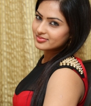 nikesha-patel-red-hot-photos-23