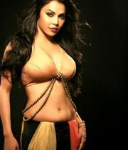 nikita-rawal-hot-photos-01