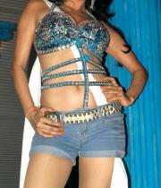 nikita-rawal-hot-photos-08