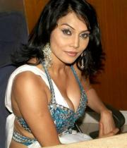 nikita-rawal-hot-photos-12