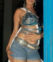 nikita-rawal-hot-photos-14