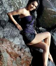 nikita-rawal-hot-photos-15