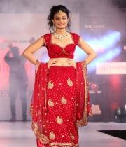 nikitha-narayan-at-fashionolagy-fashion-show-2