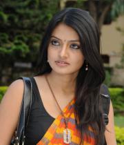actress-nikitha-narayan-cute-saree-photos-01