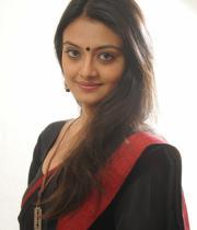 actress-nikitha-narayan-cute-saree-photos-05