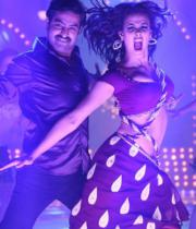 ntr-baadshah-item-songs-stills-01