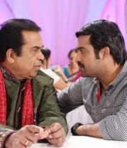 ntr-baadshah-item-songs-stills-09