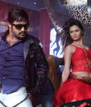 ntr-baadshah-item-songs-stills-18