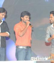 paisa-audio-launch-stills-49