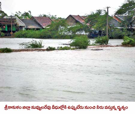 phailin-cyclone-damage-images-11