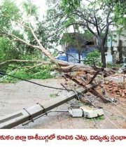 phailin-cyclone-damage-images-3