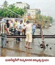 phailin-cyclone-damage-images-5