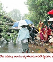 phailin-cyclone-damage-images-9