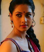 pooja-hot-saree-photos-10